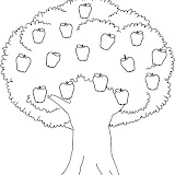 APPLE_TREE1_BW_thumb.jpg