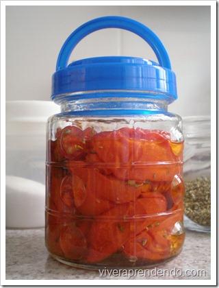 Tomate Seco6