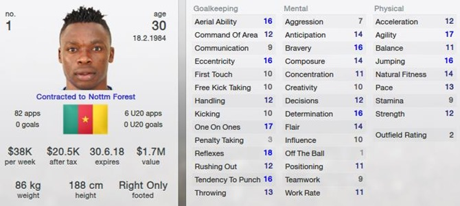 Carlos Kameni in Football Manager 2013