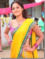 Desingu Raja Actress Bindu Madhavi Saree Photos