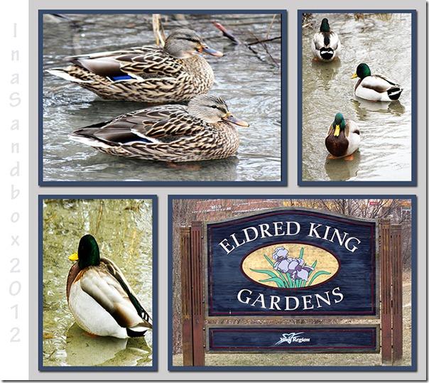 Eldred King Park Mosaic