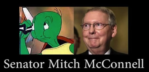 CC Photo Google Image Search Source is whistleblower newswire com  Subject is turtle mcconnell
