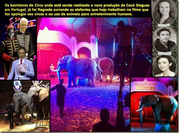 bastidores_circo_mistico