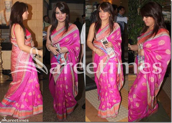 Mahima_Chaudhary_Pink_Silk_Saree
