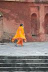 Les sadhu sont partout ici
