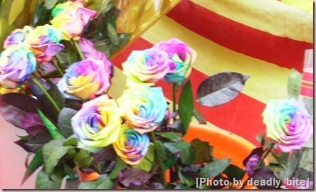 """""""Rainbow Roses""""; D.B.; Barcelona, 23/04/08"""