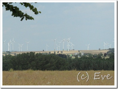 Paderborn Juli 2011 004