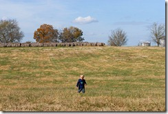 troy in the field