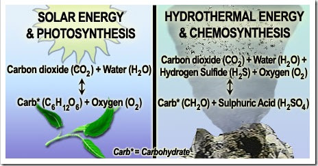 explain the process of chemosynthesis Photosynthesis is a process used by plants and other organisms to convert light an even closer form of symbiosis may explain the origin of chemosynthesis.