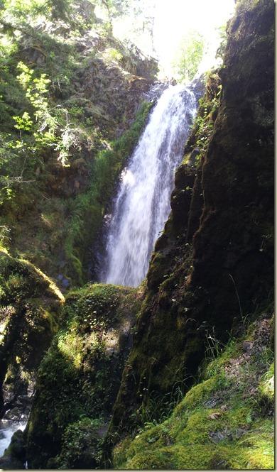 Falls Umpqua R trip