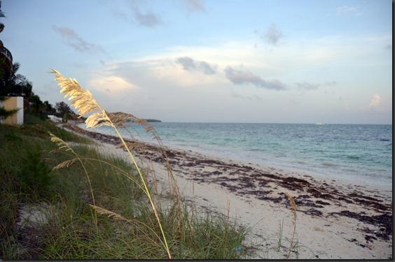 BahamasB 126