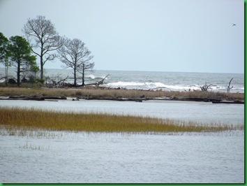 Hunting Island with Nancy & Bill (21)