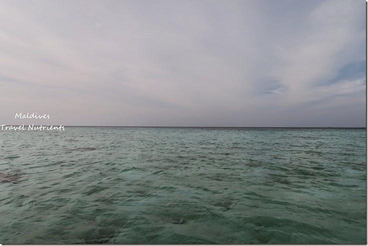 馬爾地夫 野餐島 浮潛 (56)