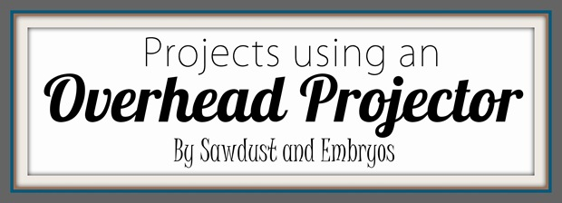 Projects using an Overhead Projector! {Sawdust and Embryos}