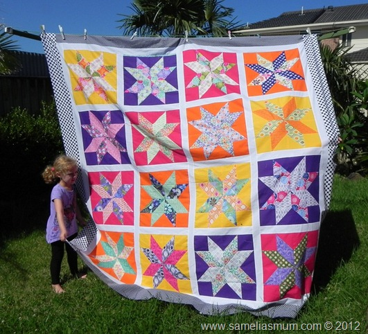 Starflower Quilt 2