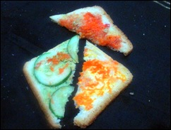 sandwich cross section
