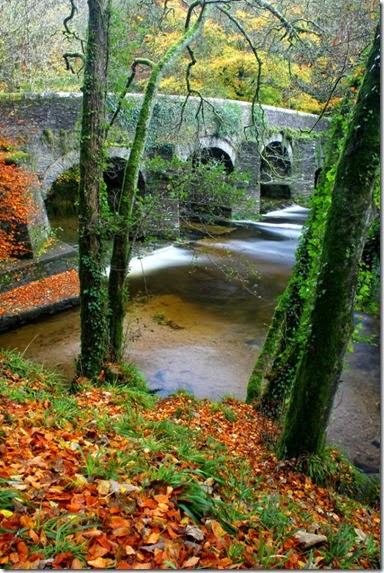 autumn-colors-fall-007