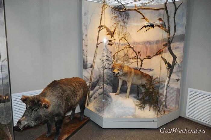 Zubry - Danki museum 3.jpg