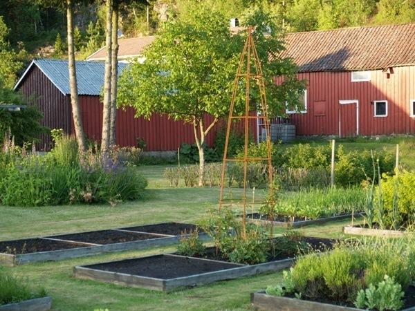 2012-06-27 Hagen på Møll (64)