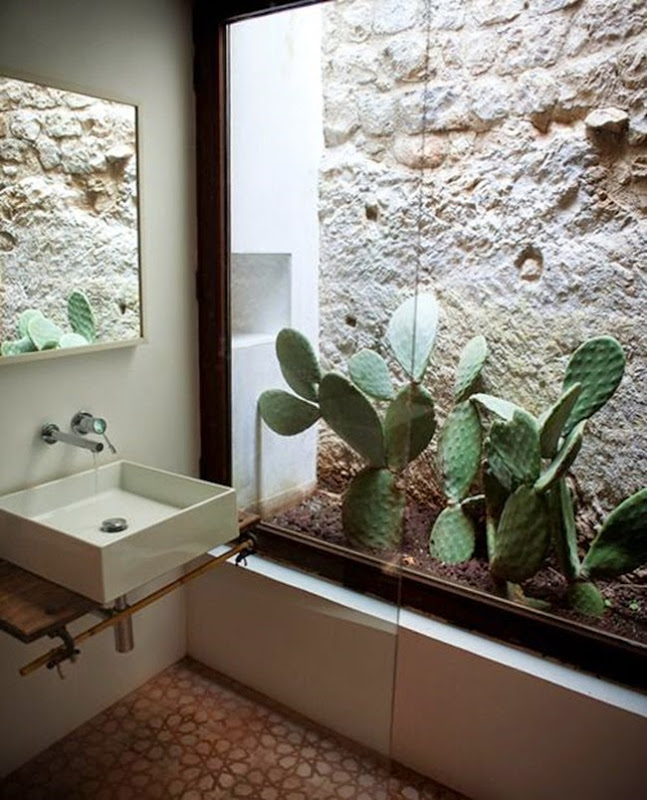 Plants_in_the_bathroom_jungle_mood