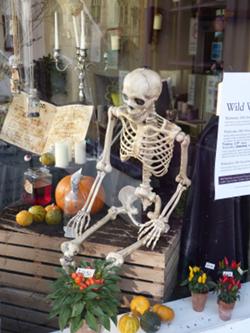 Хэллоуин - витрина магазина