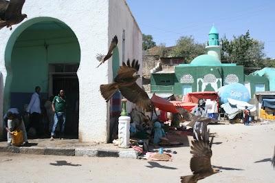 Ethiopia560.JPG