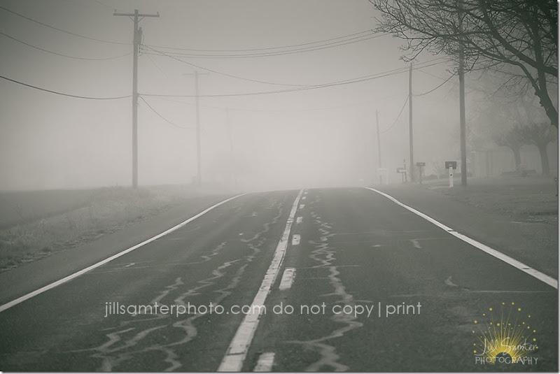 fog-5434