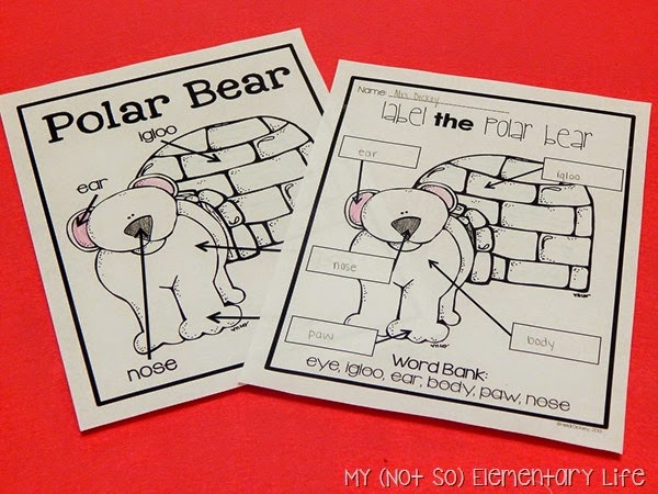 Polar Bear Labeling Activity