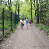 Wildpark-PF_2012-04-29_968.JPG