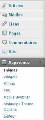 modifier-theme-wordpress_2