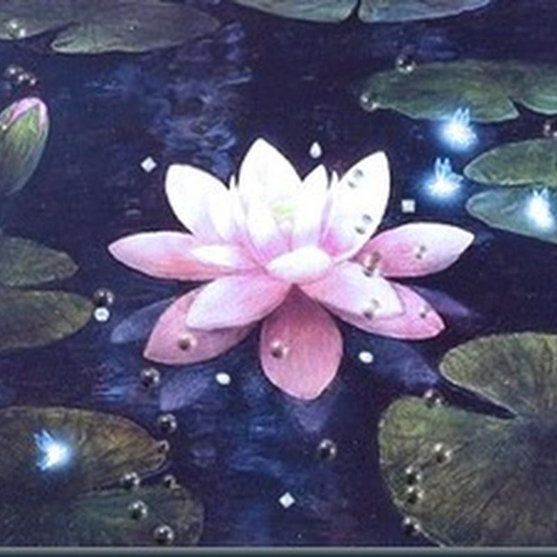 A Flor de Lótus
