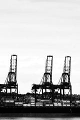 Harwich-Docks