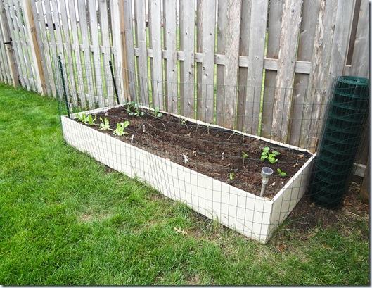Planting 04282012-3