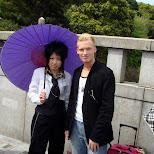 Japanese girl holding a gigantic purple parasol in Harajuku, Tokyo, Japan