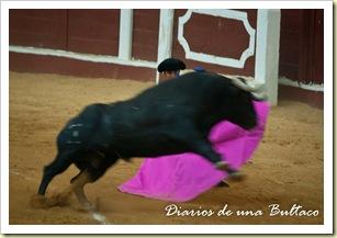 Toros_León-48