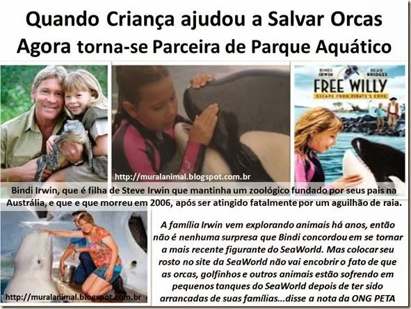 Quando Criança ajudou a Salvar Orcas