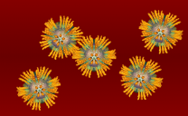 Hepatitis%20C