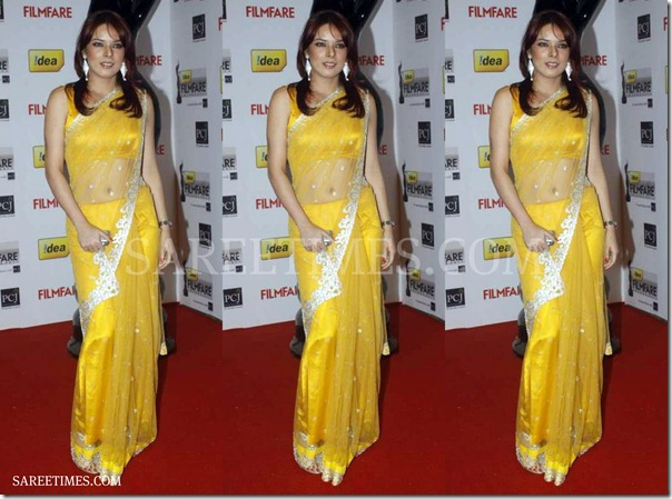Udita_Goswami_Yellow_Saree