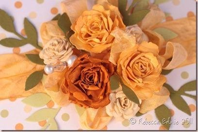 orange roses gift box closeup