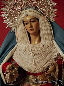 santa-maria-del-triunfo-inmaculada-de-granada-y-reina-de-la-resurreccion-hebrea-2014-alvaro-abril-(9).jpg