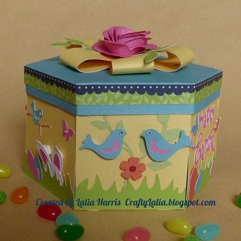 box birds