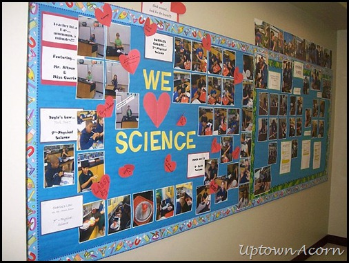 Science Classroom Decoration Ideas ~ The uptown acorn my science classroom