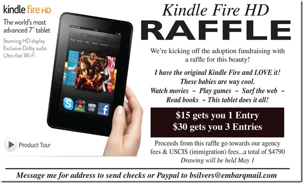 kindle fire - small.indd