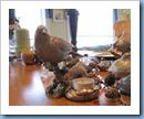 20111116_pinecones_002