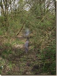 Rijkel: de oude spoorwegbedding als open riool