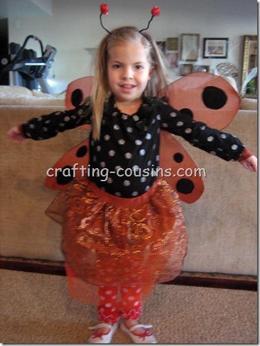 Costumes (9)
