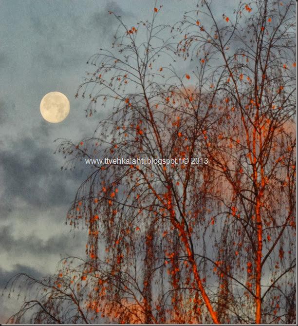 kuu vaikset sadepilvi 013