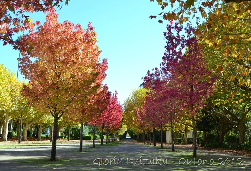 Glória Ishizaka - Folhas de Outono - Portugal 9