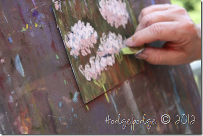 Queen Anne's lace chalk pastel tutorial