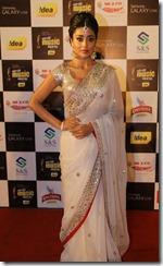 Shriya Saran @ Mirchi Music Awards 2013 (South) Red Carpet Photos